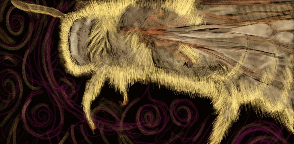 The bee flies through time and space gathering, exploring, seeking.