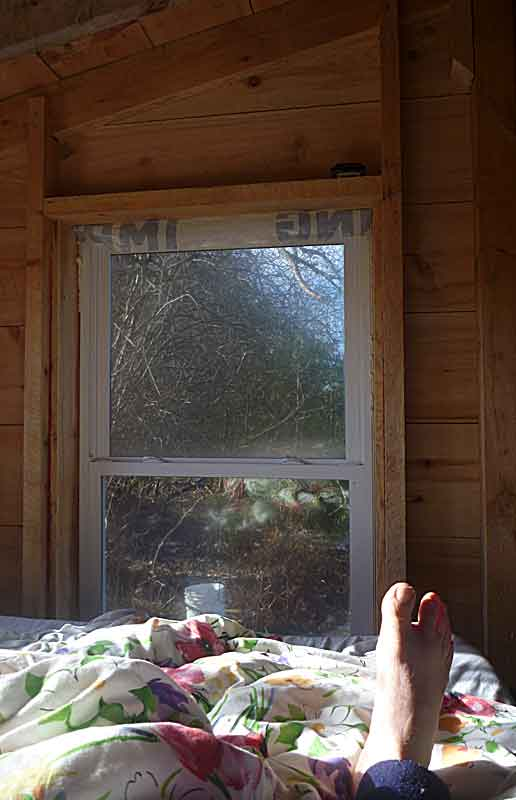 Big foot looks through his window on the world. He tries not to notice the construction debris still to be put away.