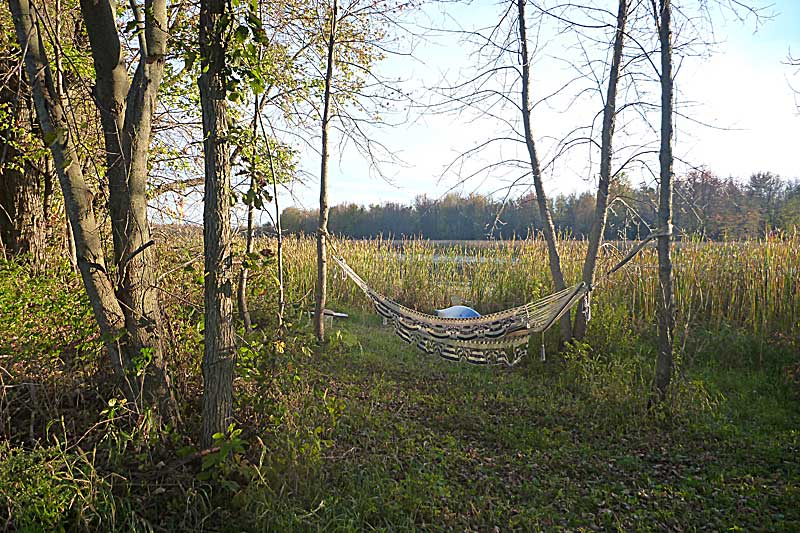 Ah, summer and time spent swinging in the hammock.
